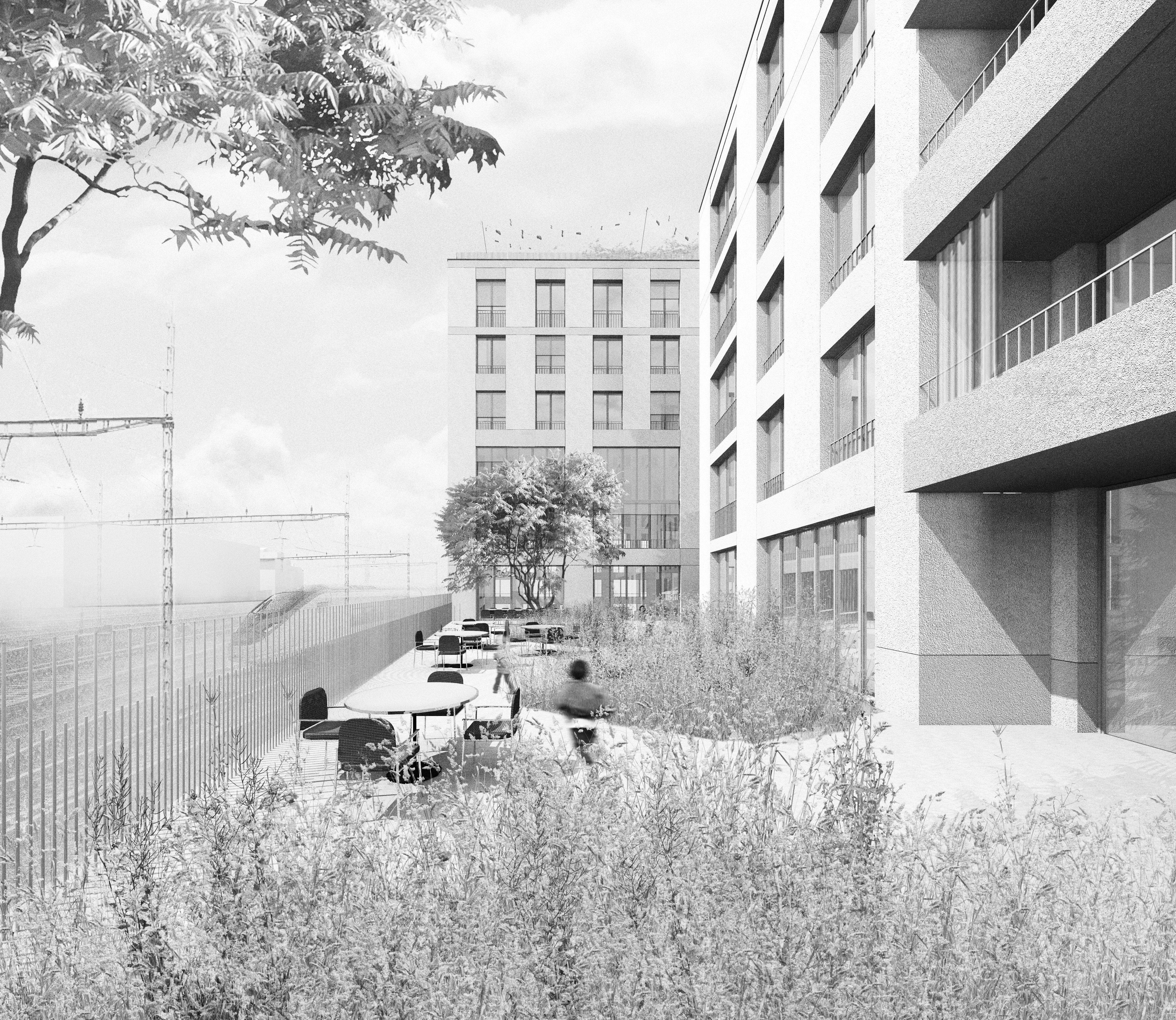 002_zol_perspektive-terrasse